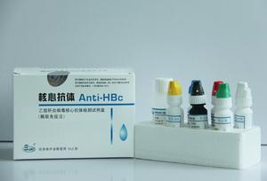 乙型肝炎病毒核心抗体